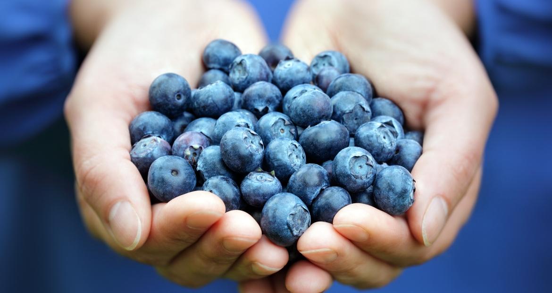 Mirtilli-benefici-e-proprietà-i-piccoli-frutti-perfetti-dopo-l'allenamento