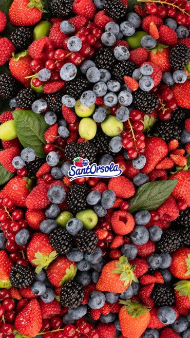 Sfondo-frutti-Sant'Orsola-1