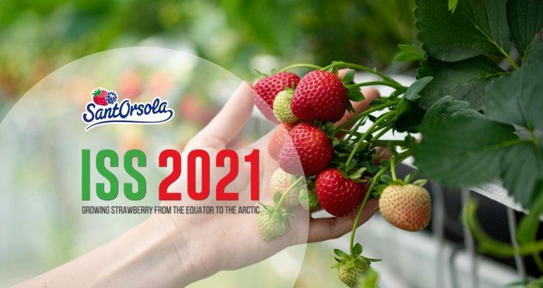 Strawberry-Symposium-ISS2021-Fragola-simposio-Sant'Orsola-Gianluca-Savini
