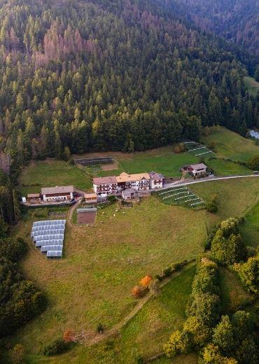 Rosanna-Pallaoro-Storie-dai-campi-Sant'Orsola-more-frutti-di-bosco-piccoli-frutti-trentino-valle-mocheni-agricoltura