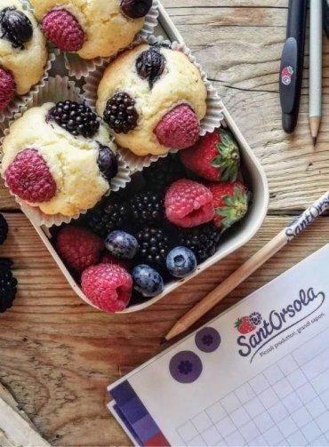 Back-to-school-SantOrsola-Muffin-frutti-di-bosco-senza-glutine-ricetta-Monica-Bellin